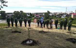Яблоневый сад в память о Героях